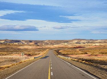 ARG2825AW Ruta 40 near Perito Moreno Town, Santa Cruz Province, Patagonia, Argentina
