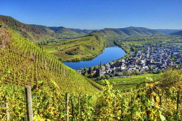 GER10863AWRF Mosel with Calmont vineyard, Bremm, Rhineland-Palatinate, Germany