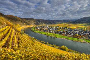 GER10866AWRF River Mosel with Ernst at fall, Rhineland-Palatinate, Germany