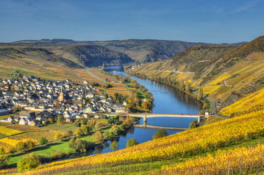 GER10869AWRF View at Trittenheim with river Mosel at fall, Rhineland-Palatine, Germany