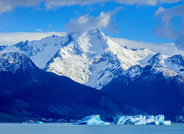 ARG3057AWRF Icebergs on Lake Argentino, Los Glaciares National Park, Santa Cruz Province, Patagonia, Argentina