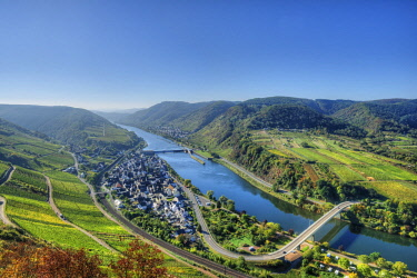 GER10815AW River Mosel with Neef, Rhineland-Palatinate, Germany