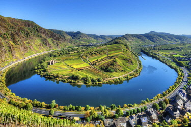 GER10817AW Mosel with Calmont vineyard, Bremm, Rhineland-Palatinate, Germany