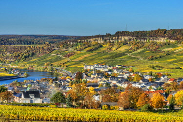 GER10819AW River Mosel with Nittel at fall, Rhineland-Palatinate, Germany