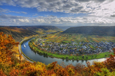 GER10827AW River Mosel with Ernst at fall, Rhineland-Palatinate, Germany