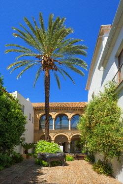 SPA7995AW Museo Taurino corrida museum, Cordoba, Andalusia, Spain