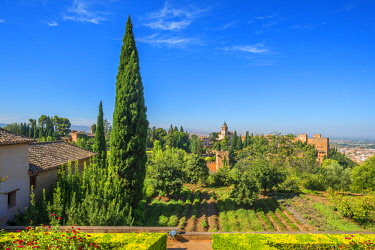 SPA8028AW View at the Alhambra from the Generalife gardens, UNESCO World Heritage Site, Granada, Andalusia, Spain