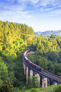 SL01219 Sri Lanka, Ella, Train on Nine Arches bridge