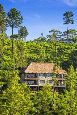 SL01223 Sri Lanka, Ella, 98 Acres Resort and Spa.