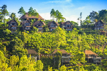 SL01263 Sri Lanka, Ella, 98 Acres Resort and Spa.