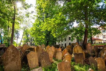 CZE1895RF Europe, Czech Republic, Bohemia, Prague, Unesco site, Jewish Cemetery