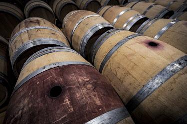 SPA8070 Wine barrels in the Hugas de Batlle winery in the Emporda region north of the Costa Brava in Catalonia Spain