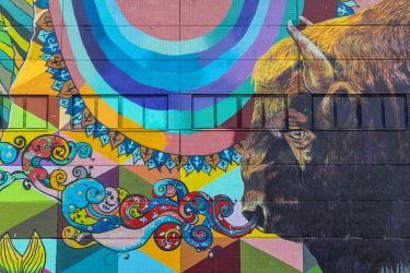 BY01144 Wall murals, Oktyabrskaya (former industrial area), Minsk, Belarus