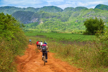 HMS3048778 Cuba, Pinar del Rio province, Vinales, Vinales national park, Vinales valley, a UNESCO World Heritage site, dotted with mogotes or limestone outcrops, bike ride