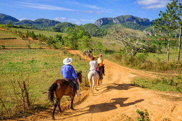 HMS3048783 Cuba, Pinar del Rio province, Vinales, Vinales national park, Vinales valley, a UNESCO World Heritage site, dotted with mogotes or limestone outcrops, horse ride