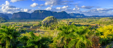 HMS3119327 Cuba, Pinar del Rio province, Vinales, Vinales national park, Vinales valley, a UNESCO World Heritage site, dotted with mogotes or limestone outcrops