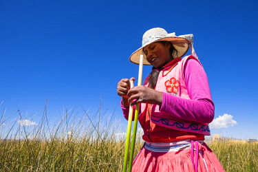 HMS2356902 Peru, Puno Province, Titicaca lake, descendants of the indians Uros live on totora floatting islands, mainly from the tourism, Uros young girl
