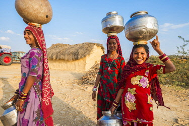 HMS2189739 India, Rajasthan state, Jaisalmer, gipsy village, back from the well