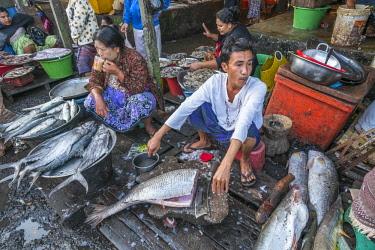 HMS3048668 Myanmar (Burma), Rakhine state (or Arakan state), Sittwe, fish market
