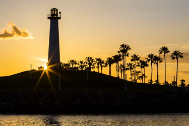 AURTOFA000396 Silhouette of lighthouse and palm trees at sunset, Long Beach, California, USA