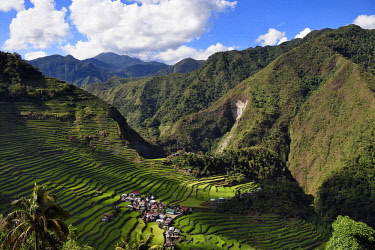 HMS2617972 Philippines, Ifugao province, Banaue rice terraces around the village of Batad, listed as World Heritage by UNESCO, fed by an ancient irrigation system from the rainforests above the terraces