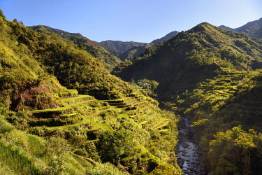 HMS2617988 Philippines, Ifugao province, Banaue rice terraces around the village of Cambulo, listed as World Heritage by UNESCO