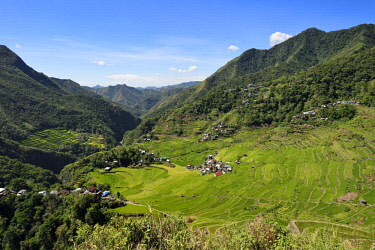 HMS2617990 Philippines, Ifugao province, Banaue rice terraces around the village of Batad, listed as World Heritage by UNESCO, fed by an ancient irrigation system from the rainforests above the terraces