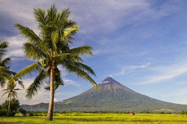 HMS3145925 Philippines, Luzon, Albay Province, Tabaco, Mayon Volcano
