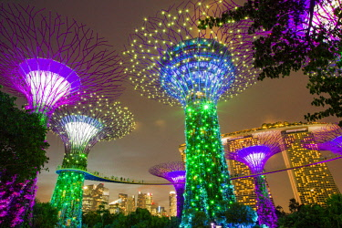 Singapore, Marina Bay, Gardens by the bay, listed as World Heritage by Unesco, Supertree Grove. Background: buildings of Financial District and Marina Bay Sands Hotel