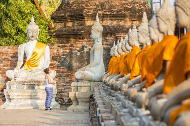 HMS3042831 Thailand, province of Phra Nakhon Si Ayutthaya, Ayutthaya, listed as World Heritage by UNESCO, Wat Yai Chai Mongkhon, Buddha statues