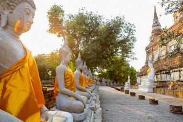 HMS3042833 Thailand, province of Phra Nakhon Si Ayutthaya, Ayutthaya, listed as World Heritage by UNESCO, Wat Yai Chai Mongkhon, Buddha statues