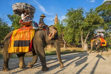 HMS3082828 Thailand, Ayutthaya province, Ayutthaya, Historical Park listed as World Heritage by UNESCO, elephant ride