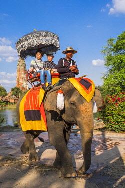 HMS3082834 Thailand, Ayutthaya province, Ayutthaya, Historical Park listed as World Heritage by UNESCO, elephant ride