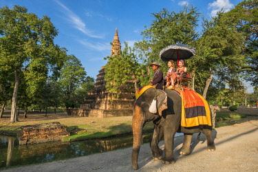 HMS3082846 Thailand, Ayutthaya province, Ayutthaya, Historical Park listed as World Heritage by UNESCO, elephant ride