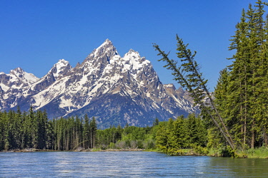 USA13686 USA, Grand Teton National Park, Wyoming. Grand Teton peak (13,770 ft) viewed from the Snake River.