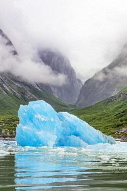 USA13763 USA, Endicott Arm, Alaska. A large blue iceberg calved from Dawes Glacier floats in the beautiful steep-sided fjord of Endicott Arm.