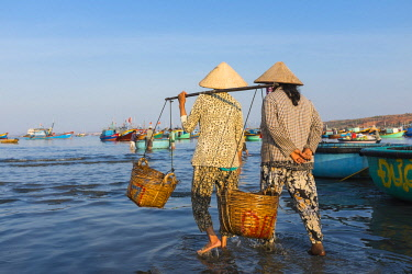 HMS2506649 Vietnam, South Central Coast region, Mui Ne fishing village, return from fishing