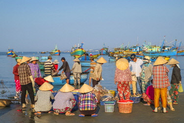 HMS2506651 Vietnam, South Central Coast region, Mui Ne fishing village, return from fishing