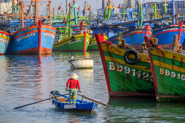 HMS2506703 Vietnam, South Central Coast region, Binh Dinh province, Quy Nhon, fishing harbour