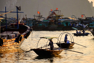 HMS3217194 Vietnam, Quang Ninh province, Bai Thu Long bay, listed as World Heritage by UNESCO, fishing boats in the port of Cai Rong