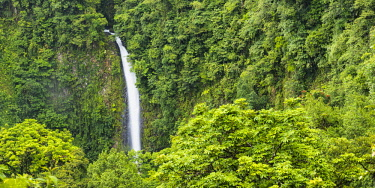 CR33269AW Costa Rica, Alajuela, La Fortuna. La Fortuna Waterfall.