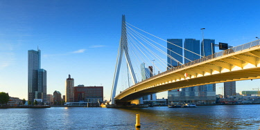 NLD0895AW Erasmus Bridge (Erasmusbrug) and skyline, Rotterdam, Zuid Holland, Netherlands