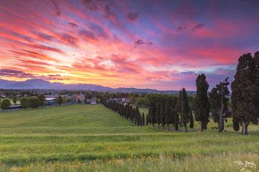 CLKAG90845 Sunrise on Viale dei Cipressi, Inverigo, Brianza, Como province, Lombardy, Italy