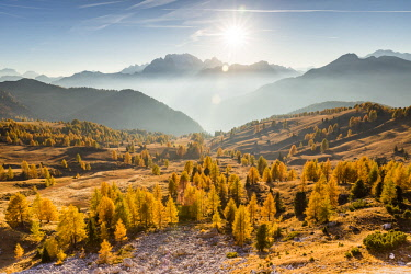 CLKFM90521 Giau pass in the warm autumn colors,Colle Santa Lucia,Belluno district,Veneto,Italy,Europe