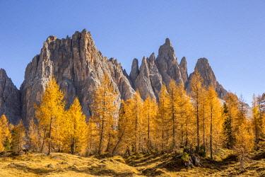 CLKFM90559 The west walls of Mount Croda da Lago,Giau Pass,Belluno district,Veneto,Italy