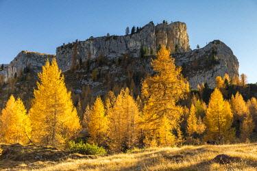 CLKFM90570 Mount Lastoni di Formin,Giau Pass,Belluno district,Veneto,Italy