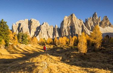 CLKFM90571 The west walls of Mount Croda da Lago,Giau Pass,Belluno district,Veneto,Italy (MR)