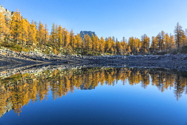 CLKGP88165 The Crampiolo Peak is reflected in the Nero Lake in autumn (Buscagna Valley, Alpe Devero, Alpe Veglia and Alpe Devero Natural Park, Baceno, Verbano Cusio Ossola province, Piedmont, Italy)