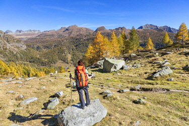 CLKGP88188 A girl is looking at the Alpe Veglia and Alpe Devero Natural Park in autumn season (Buscagna Valley, Alpe Devero, Baceno, Verbano Cusio Ossola province, Piedmont, Italy) (MR)