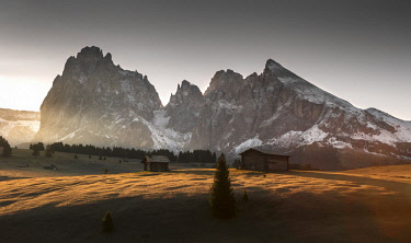 CLKMD89221 Alpe di Siusi/Seiser Alm, Dolomites, South Tyrol, Italy. Sunrise on the Alpe di Siusi / Seiser Alm with the peaks of Sassolungo